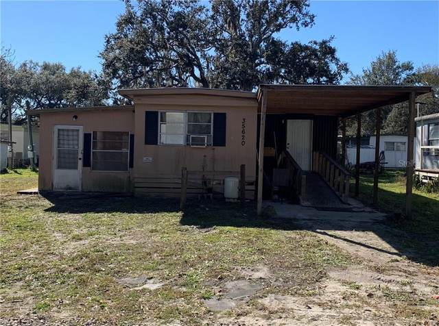 35620 Sophie Drive, Zephyrhills, FL 33541 (MLS #T3287387) :: Florida Real Estate Sellers at Keller Williams Realty