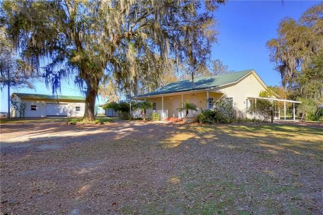 8304 Bob Wiggs Avenue, Lithia, FL 33547 (MLS #T3287457) :: Keller Williams Realty Peace River Partners