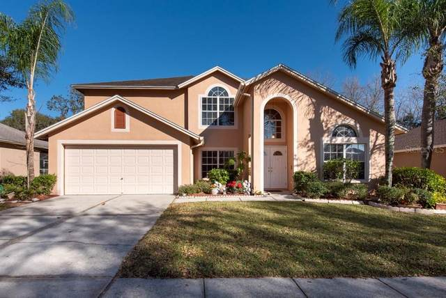 4412 Winding River Drive, Valrico, FL 33596 (MLS #T3287907) :: The Duncan Duo Team