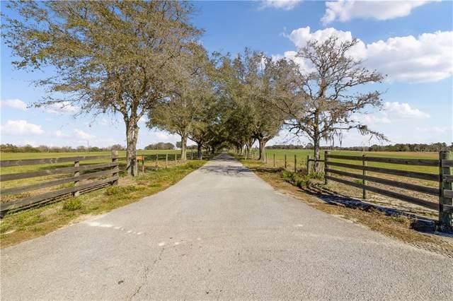 23183 Powell Road, Brooksville, FL 34602 (MLS #T3287967) :: Bridge Realty Group