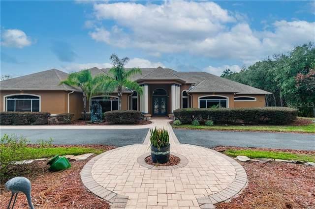 11348 Newington Avenue, Spring Hill, FL 34609 (MLS #T3288439) :: The Duncan Duo Team