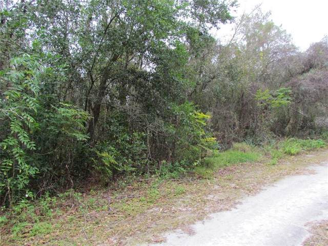 Webb Street, New Port Richey, FL 34654 (MLS #T3288663) :: BuySellLiveFlorida.com
