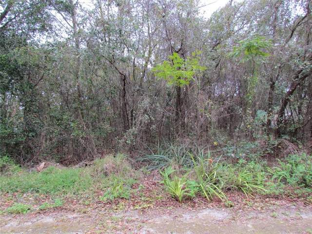 Gilmer Street, New Port Richey, FL 34654 (MLS #T3288676) :: BuySellLiveFlorida.com