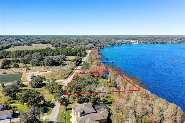 11702 Thonotosassa Road, Thonotosassa, FL 33592 (MLS #T3288705) :: The Lersch Group