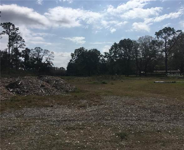 16113 Carencia Lane, Odessa, FL 33556 (MLS #T3288738) :: Florida Real Estate Sellers at Keller Williams Realty