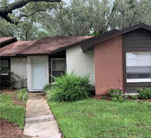5132 Gainsville Drive, Temple Terrace, FL 33617 (MLS #T3288769) :: Rabell Realty Group