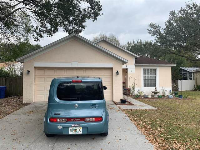 11627 Wellman Drive, Riverview, FL 33569 (MLS #T3289085) :: The Duncan Duo Team