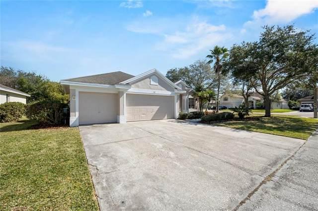 517 Lakewood Drive, Oldsmar, FL 34677 (MLS #T3289189) :: Team Borham at Keller Williams Realty