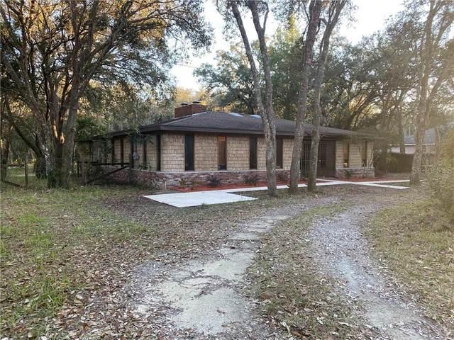 34146 Umbrella Rock Drive, Webster, FL 33597 (MLS #T3289488) :: Bridge Realty Group