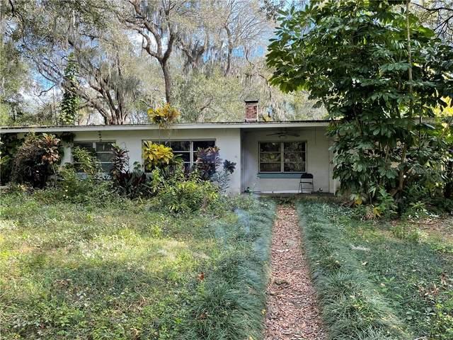 505 Seffner/Valrico Rd Road, Valrico, FL 33594 (MLS #T3289500) :: Everlane Realty