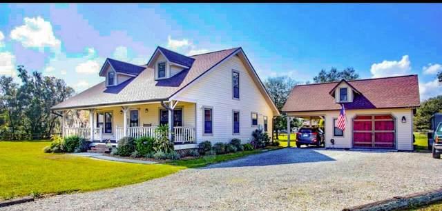 3220 Mott Road, Dover, FL 33527 (MLS #T3289502) :: Team Borham at Keller Williams Realty