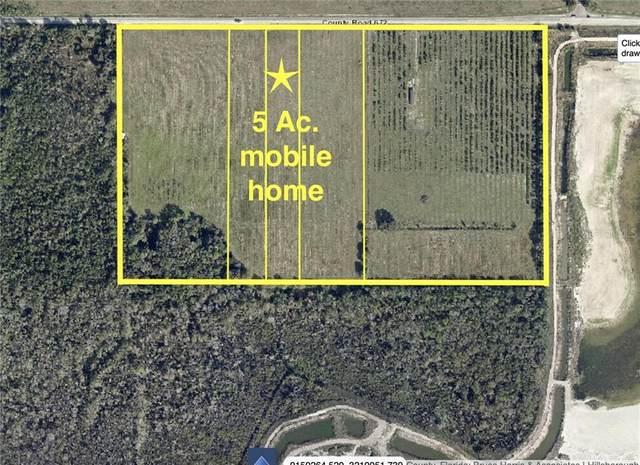 15919 672ND Highway, Lithia, FL 33547 (MLS #T3289611) :: The Brenda Wade Team