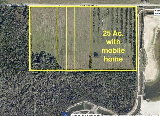 16003 672ND Highway, Lithia, FL 33547 (MLS #T3289621) :: The Brenda Wade Team