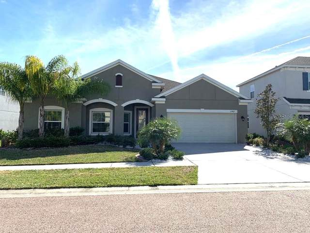 33467 Azalea Ridge Drive, Wesley Chapel, FL 33545 (MLS #T3289656) :: Vacasa Real Estate