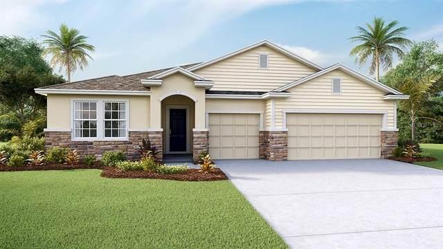 6610 Cobble Bliss Street, Zephyrhills, FL 33541 (MLS #T3289666) :: Visionary Properties Inc
