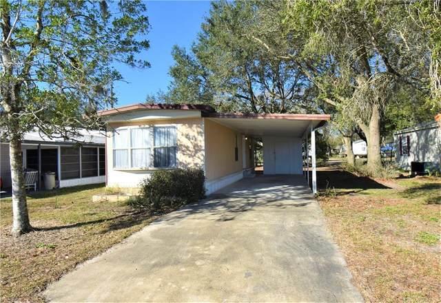 3821 Sarah Drive, Wesley Chapel, FL 33543 (MLS #T3290058) :: Dalton Wade Real Estate Group