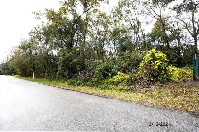 NE 2ND Street, Lutz, FL 33549 (MLS #T3290075) :: Positive Edge Real Estate