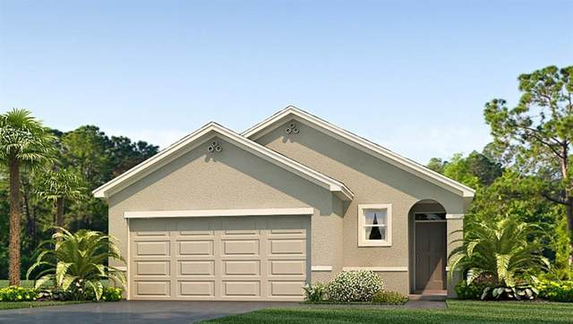 17033 Blister Wing Drive, Wimauma, FL 33598 (MLS #T3290207) :: Team Borham at Keller Williams Realty