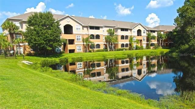 Tampa, FL 33624 :: Positive Edge Real Estate