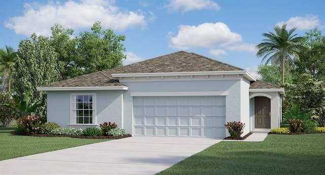 327 Macarthur Street, Bartow, FL 33830 (MLS #T3290632) :: Pepine Realty