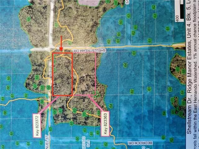 Manuel Street, Webster, FL 33597 (MLS #T3290672) :: Bridge Realty Group