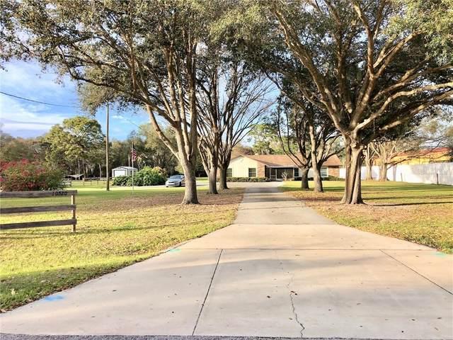 10520 Johanna Avenue, Riverview, FL 33578 (MLS #T3290692) :: Team Borham at Keller Williams Realty