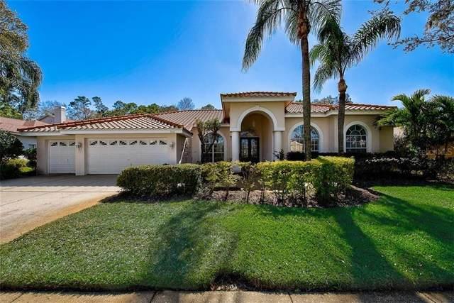3556 Florian Terrace, Palm Harbor, FL 34685 (MLS #T3290883) :: The Brenda Wade Team