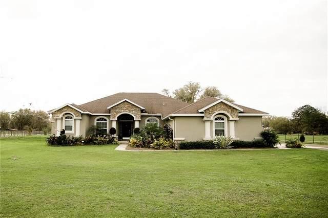 5221 Bailey Road, Plant City, FL 33565 (MLS #T3290933) :: Frankenstein Home Team