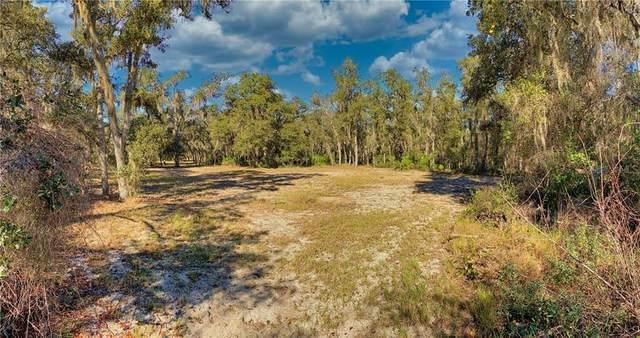2730 Tiger Creek Trail, Lake Wales, FL 33898 (MLS #T3290934) :: Bridge Realty Group