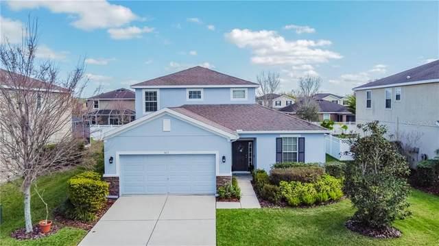4113 Granite Glen Loop, Wesley Chapel, FL 33544 (MLS #T3291157) :: Visionary Properties Inc