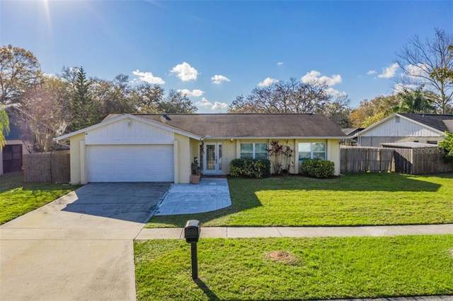 15806 Country Lake Drive, Tampa, FL 33624 (MLS #T3291263) :: New Home Partners