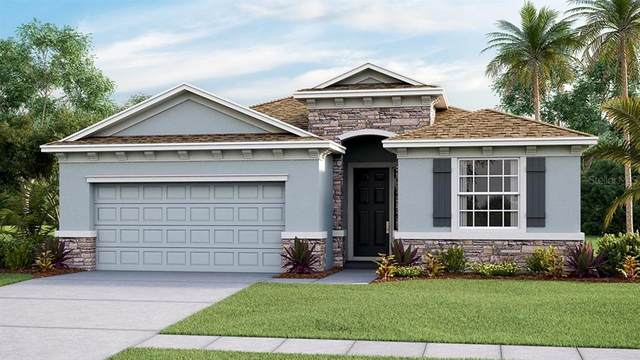 8701 Bower Bass Circle, Wesley Chapel, FL 33545 (MLS #T3291348) :: The Duncan Duo Team