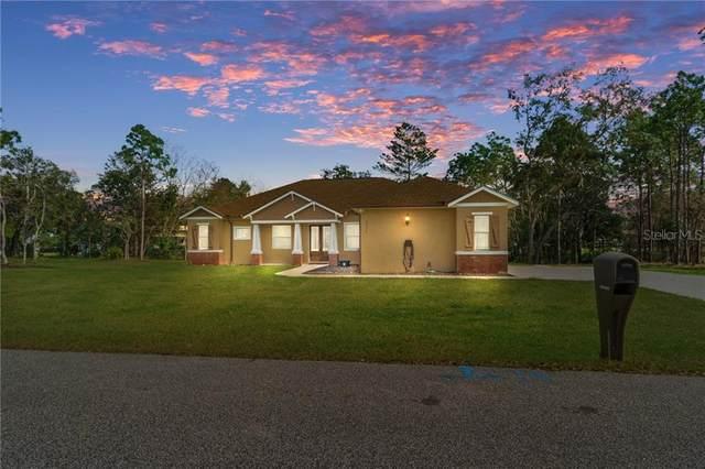 11374 Newington Avenue, Spring Hill, FL 34609 (MLS #T3291350) :: The Duncan Duo Team