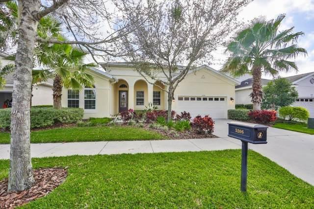 5206 Rosefinch Place, Lithia, FL 33547 (MLS #T3291378) :: The Brenda Wade Team