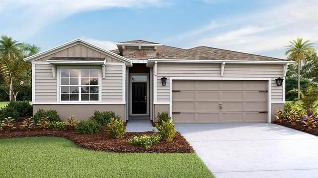 3621 Mossy Limb Court, Palmetto, FL 34221 (MLS #T3291490) :: Delgado Home Team at Keller Williams
