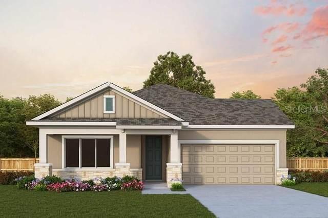 400 Orangewood Drive, Dunedin, FL 34698 (MLS #T3291631) :: Visionary Properties Inc