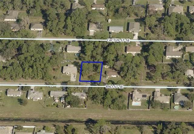 261 Bali Street SE, Palm Bay, FL 32909 (MLS #T3291642) :: Bob Paulson with Vylla Home
