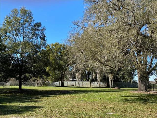2846 Sutton Road, Lakeland, FL 33810 (MLS #T3291652) :: Southern Associates Realty LLC