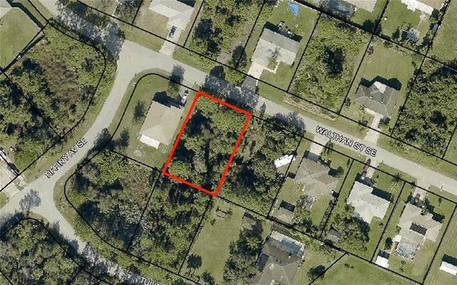 1346 Walthan Street SE, Palm Bay, FL 32909 (MLS #T3291659) :: The Kardosh Team