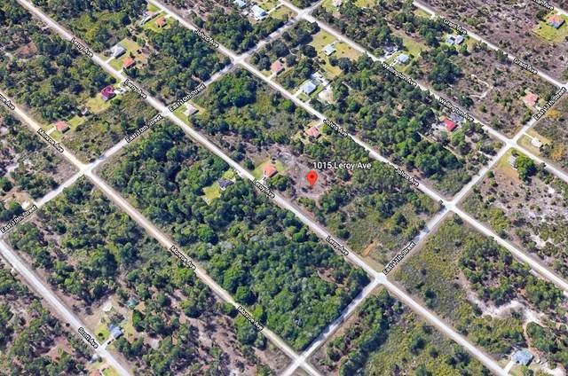 1015 Leroy Avenue, Lehigh Acres, FL 33972 (MLS #T3291690) :: Pepine Realty