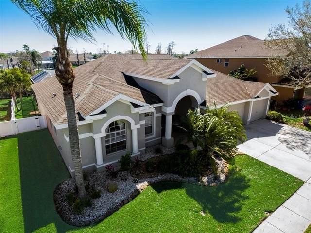 1740 Swamp Rose Lane, Trinity, FL 34655 (MLS #T3291721) :: Premier Home Experts