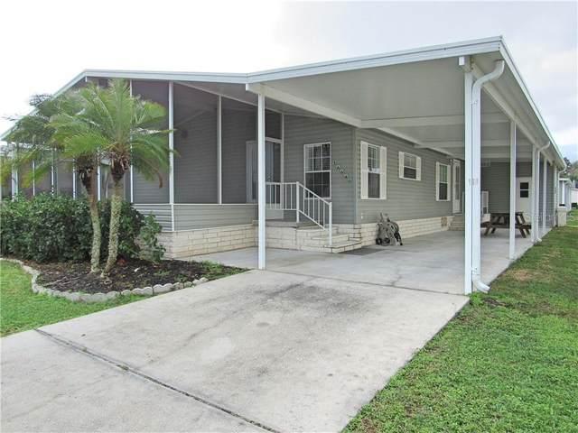 36640 Grace Avenue, Zephyrhills, FL 33542 (MLS #T3291750) :: Tuscawilla Realty, Inc