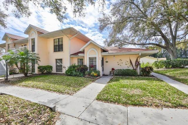 313 Knottwood Court, Sun City Center, FL 33573 (MLS #T3291781) :: Medway Realty