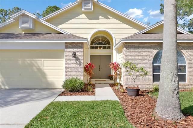 9077 Quail Creek Drive, Tampa, FL 33647 (MLS #T3291835) :: Everlane Realty