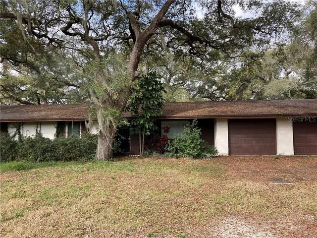 2804 W Paxton Avenue, Tampa, FL 33611 (MLS #T3291837) :: Vacasa Real Estate