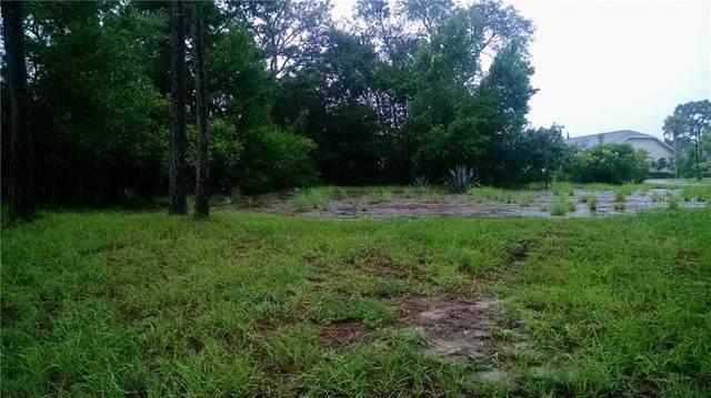 18659 White Pine Circle, Hudson, FL 34667 (MLS #T3291933) :: Pepine Realty
