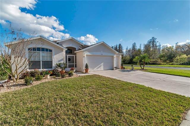 7540 Kinnow Court, Land O Lakes, FL 34637 (MLS #T3291946) :: Premier Home Experts