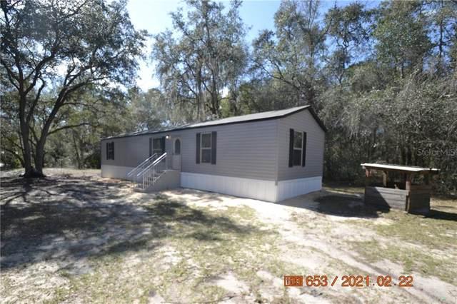 11220 NE 234TH PLACE Road, Fort Mc Coy, FL 32134 (MLS #T3291953) :: The Light Team