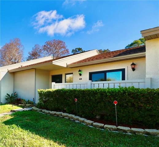 90 Colette Court, Oldsmar, FL 34677 (MLS #T3291999) :: Delta Realty, Int'l.