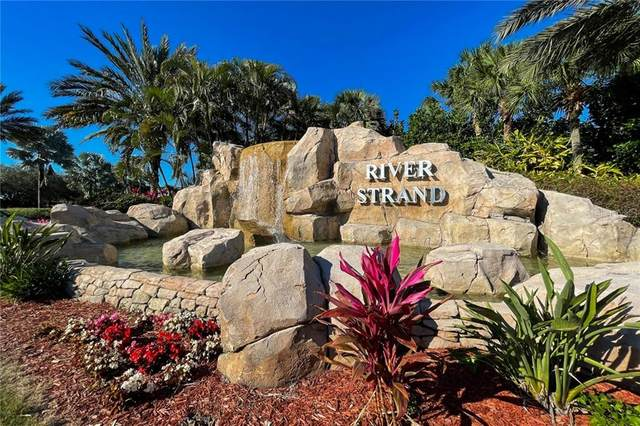 7315 River Hammock Drive #204, Bradenton, FL 34212 (MLS #T3292010) :: Rabell Realty Group